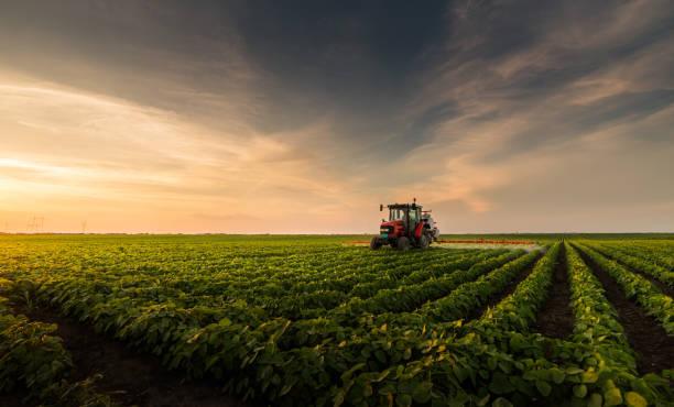봄에 분무기와 콩 분야에 살충제를 살포 하는 트랙터 - 농업 뉴스 사진 이미지