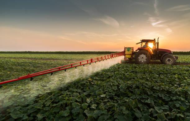 봄에 분무기와 식물성 분야에 살충제를 살포 하는 트랙터 - 농업 뉴스 사진 이미지