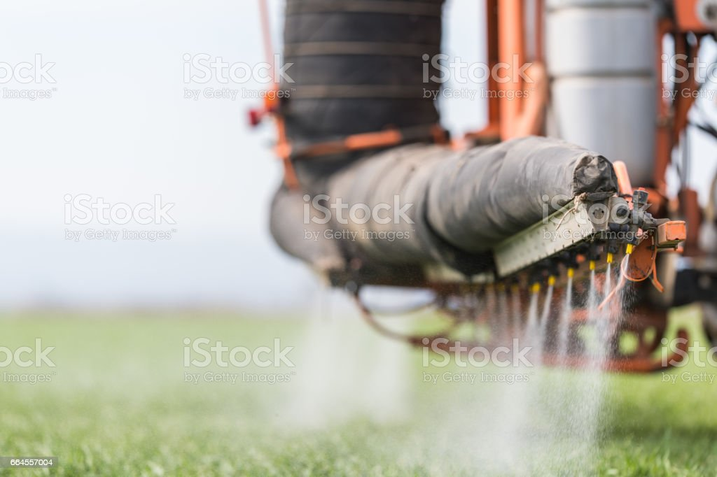Tractor spraying pesticides on wheat field with sprayer stock photo