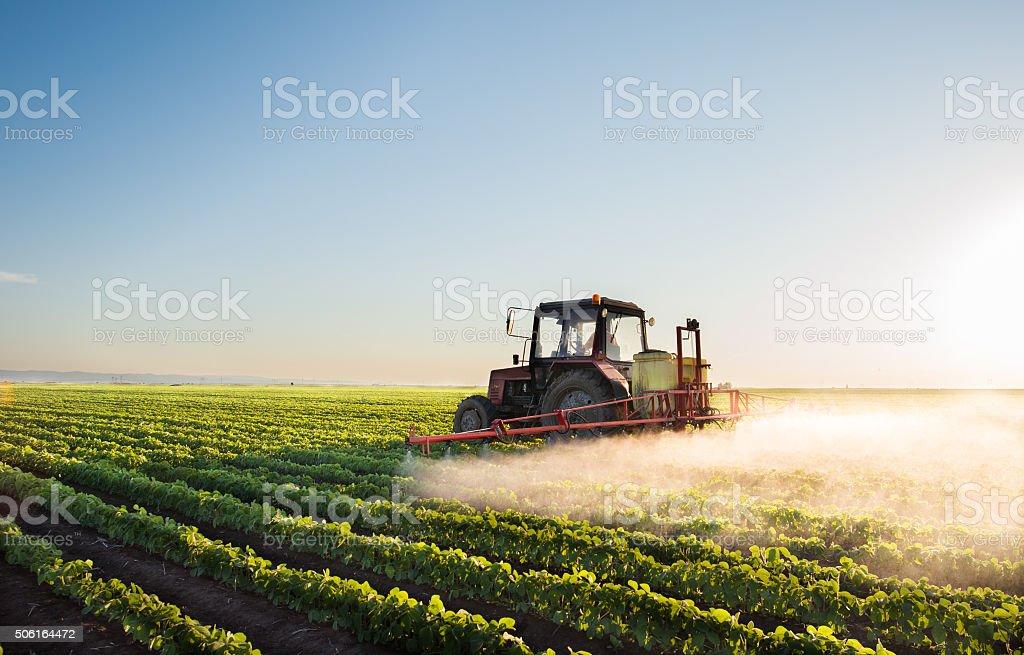 Traktor sprühen Sojabohne field – Foto