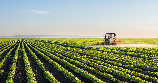 tractor spraying soybean field - field stock photos and pictures