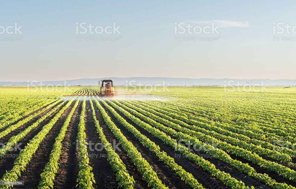 Traktor sprühen Sojabohne – Foto