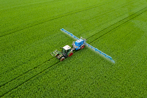 Aerial view of agricultural tractor spraying wheat field.