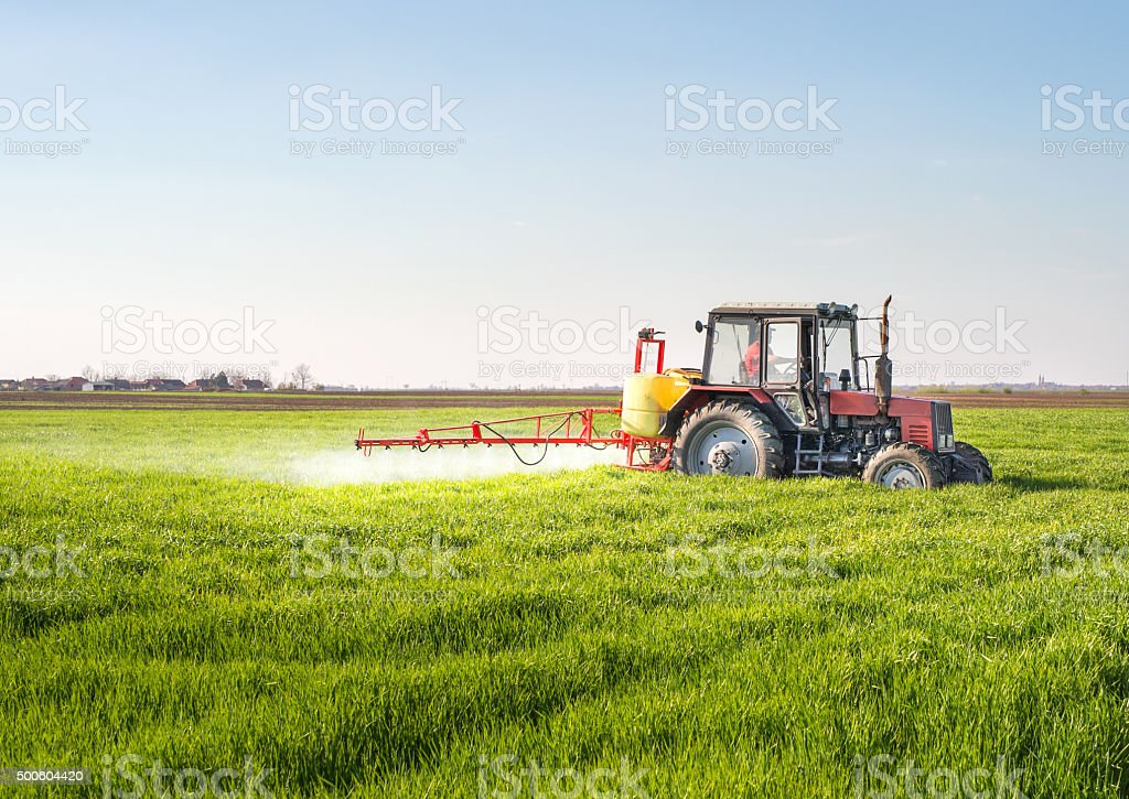 Tractor spraying wheat field - Royalty-free 2015 Stock Photo