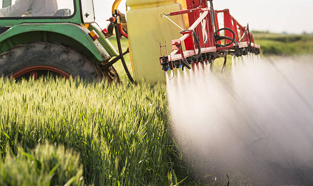 Tractor spraying wheat field Tractor spraying wheat field with sprayer crop sprayer stock pictures, royalty-free photos & images