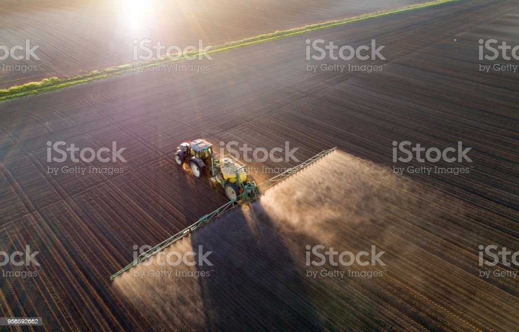 Tractor spraying young crops in field stock photo