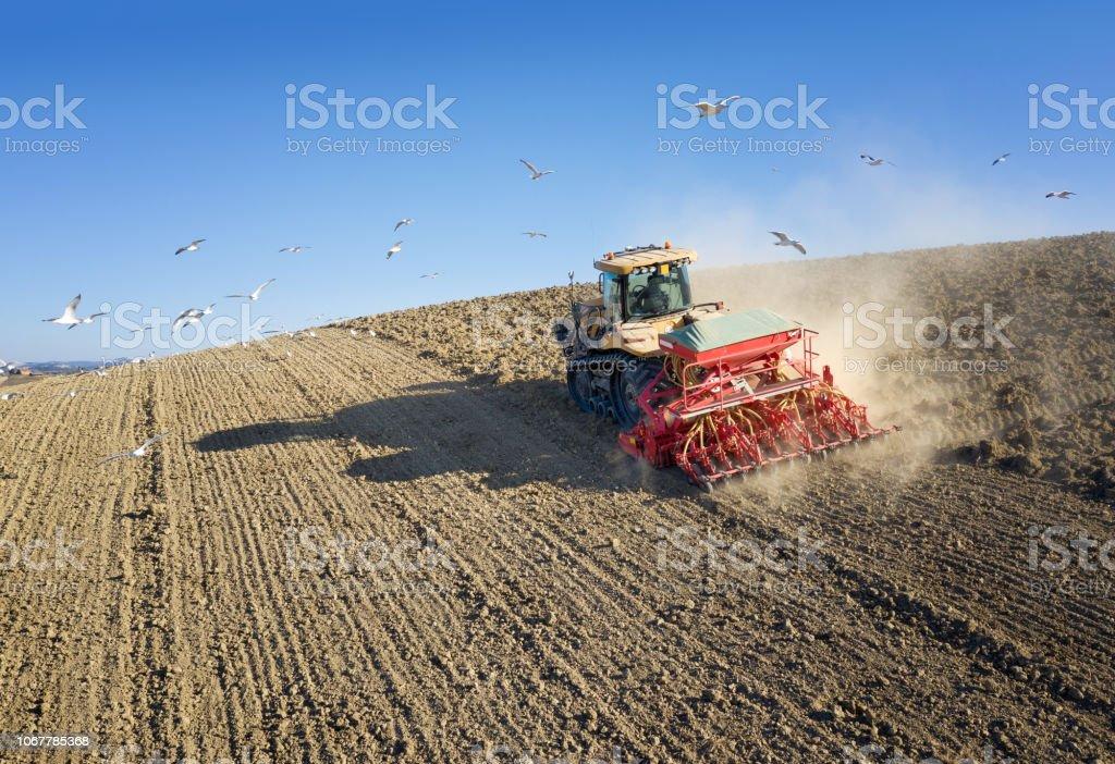 Traktor, umgeben von Möwen Pflügen eine Feld, Toskana, Italien – Foto