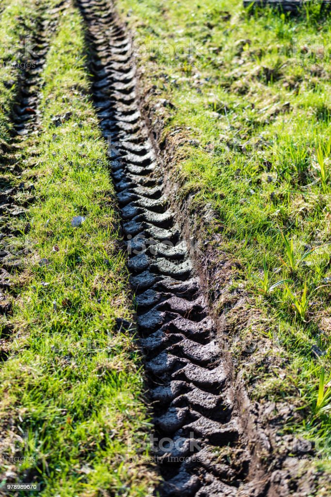 Tractor tire tracks in green grass stock photo