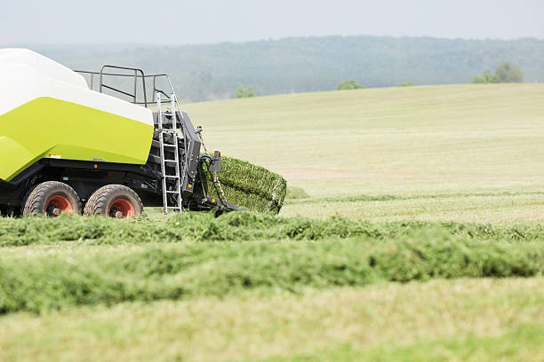 Tractor Towed Baler, Baling Alfalfa (Hay) stock photo