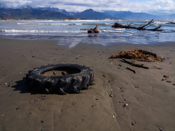 Tractor wheel abandoned along the beach - foto stock