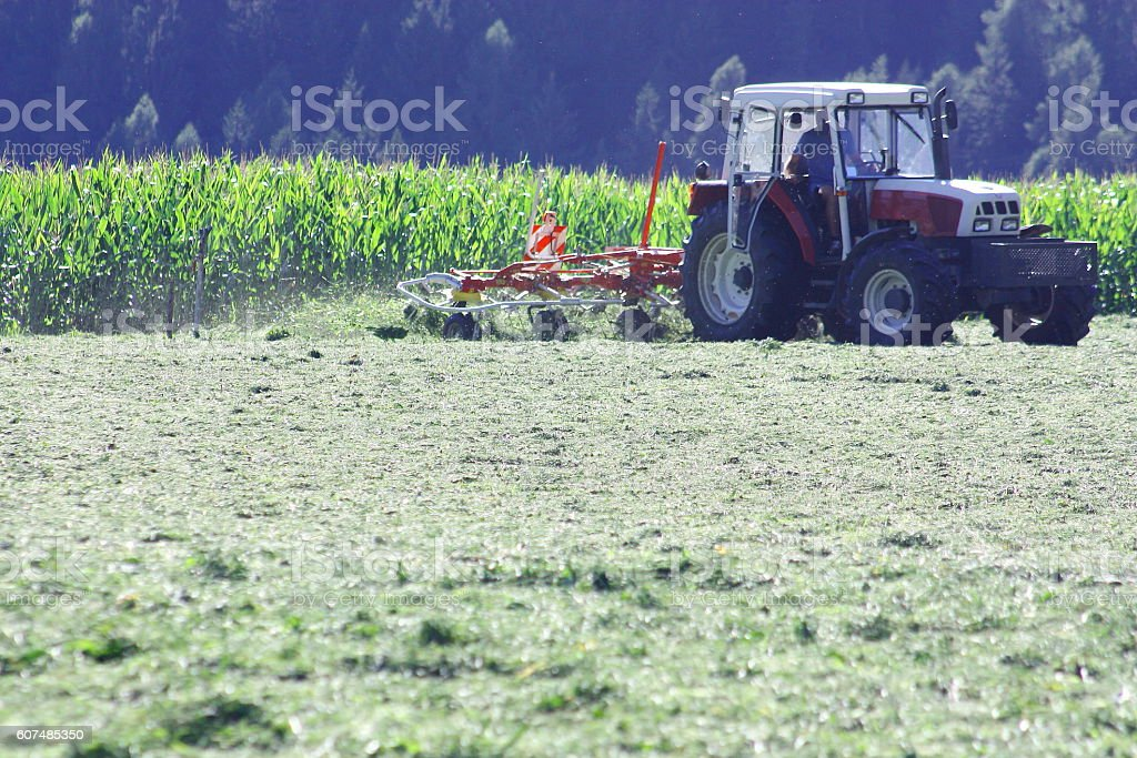 Tractor with hay tedder working on a mountain field stock photo