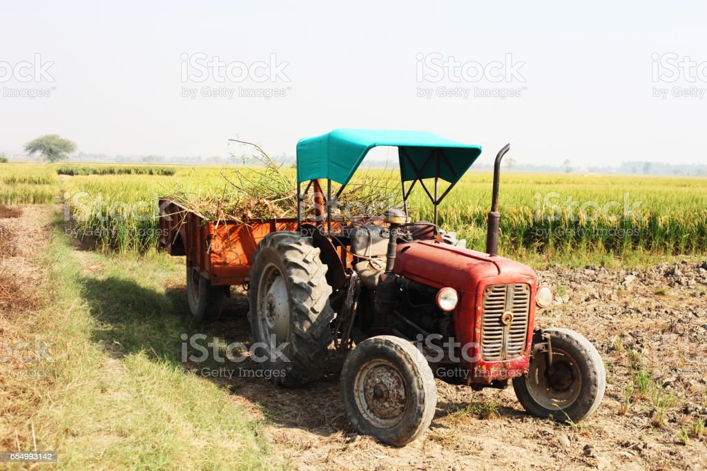 Tractor with loaded trolley in the field stock photo