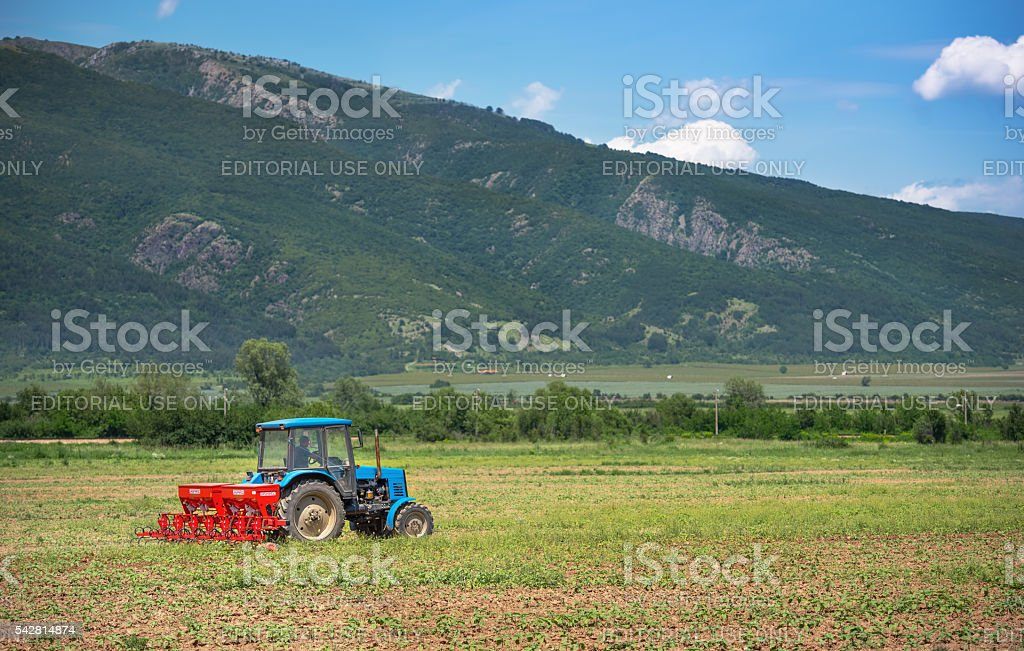 Tractor works in field. stock photo