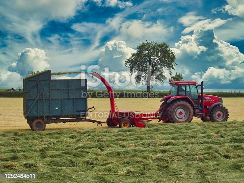 Tractor pulling a forage harvester in a wheat field, Suffolk County, United Kingdom