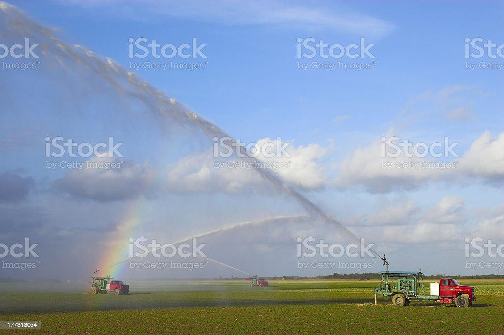 Tractors watering plants royalty-free stock photo