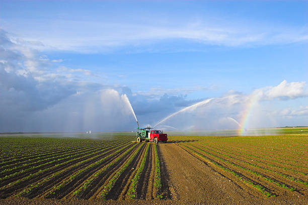 Tractors watering plants stock photo