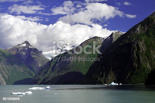 istock Tracy Arm fjords, Alaska 691658858