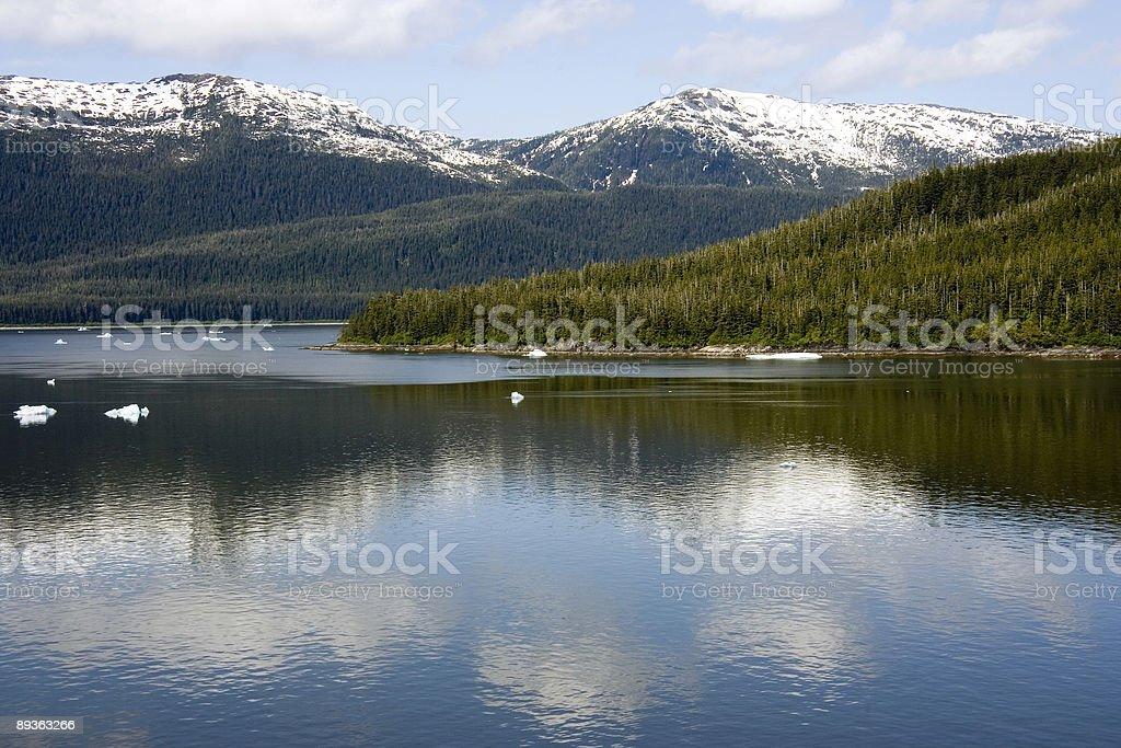 Fiordo di Tracy Arm Mountains1 foto stock royalty-free