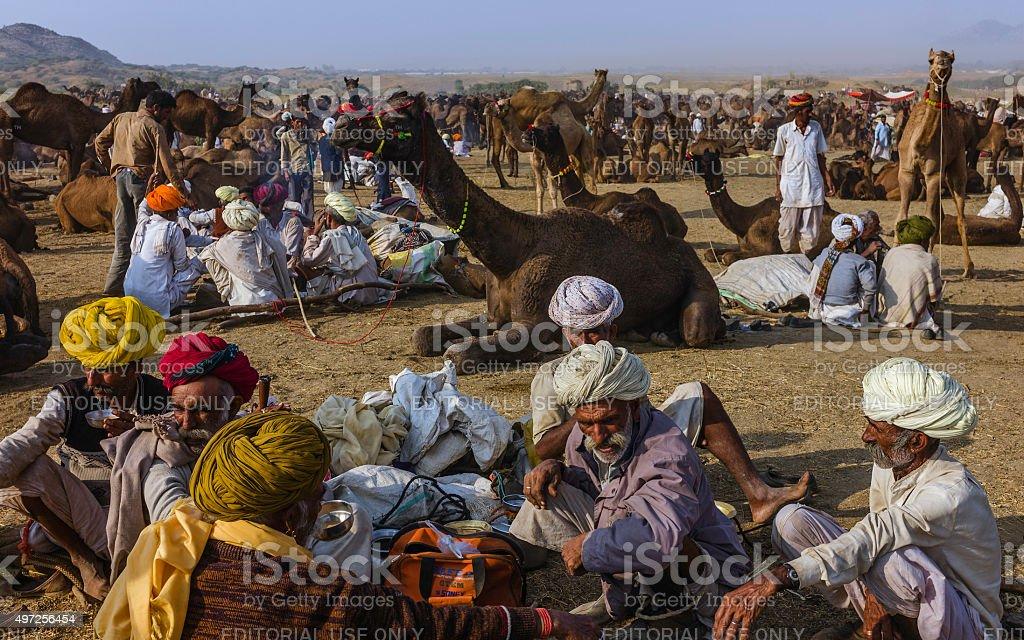 Traders buying and selling camels, Pushkar, Rajasthan, India. stock photo