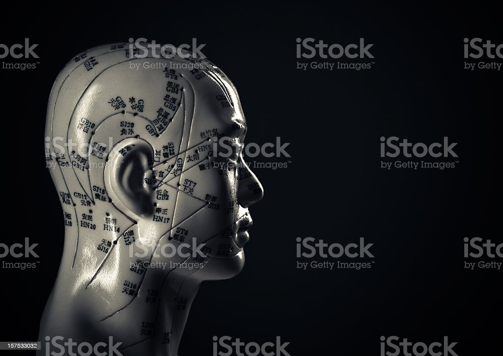 traditional acupuncture head royalty-free stock photo