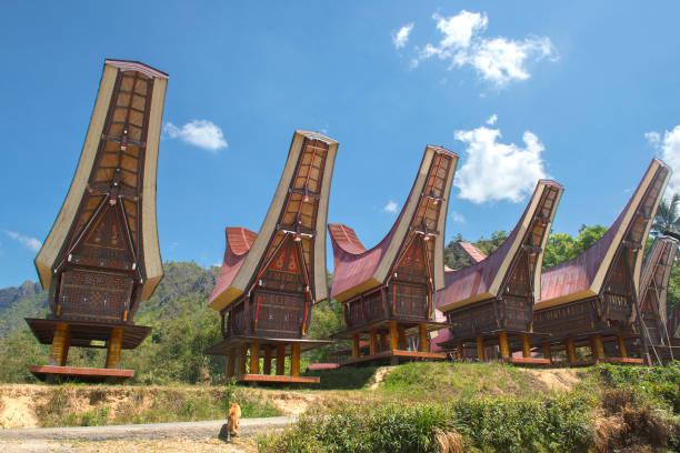 Traditionelle Alang Reisscheune, Rantepao – Foto