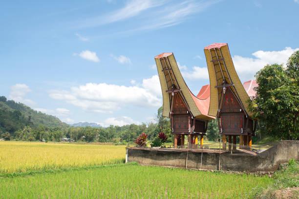 Traditionelle Alang Reisscheune, Rantepao, Tana Toraja – Foto