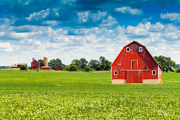 Traditional American Red Barn With Blue Sky Traditional American Red Barn With Blue Sky wisconsin stock pictures, royalty-free photos & images