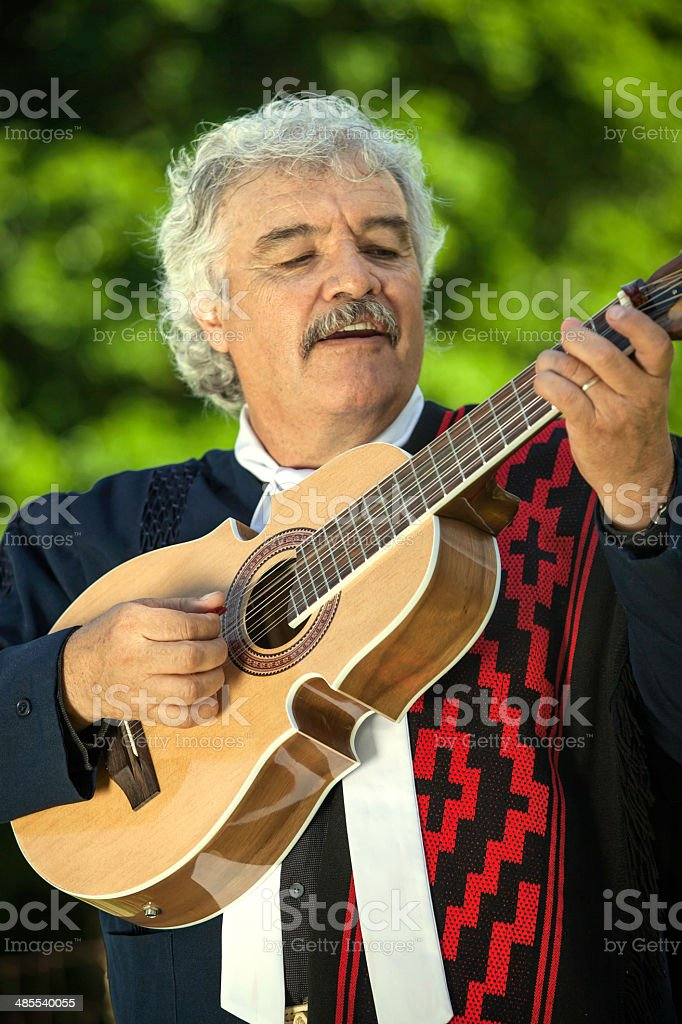Traditional Argentine musician royalty-free stock photo