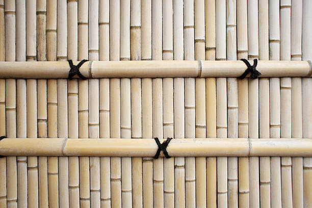 traditional asia style bamboo fence texture for background. - bambushecke stock-fotos und bilder