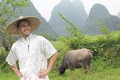 牛と伝統的なアジアの農家
