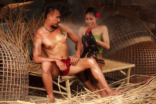Traditional Asian Thai rural daily life, an asian man surprises nearby woman by blowing water to a fighting cock. stock photo