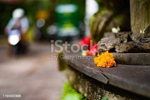 Traditional balinese offerings to gods in Bali with flowers and aromatic sticks.