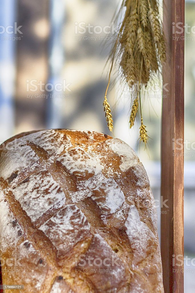 번자체 식빵 royalty-free 스톡 사진
