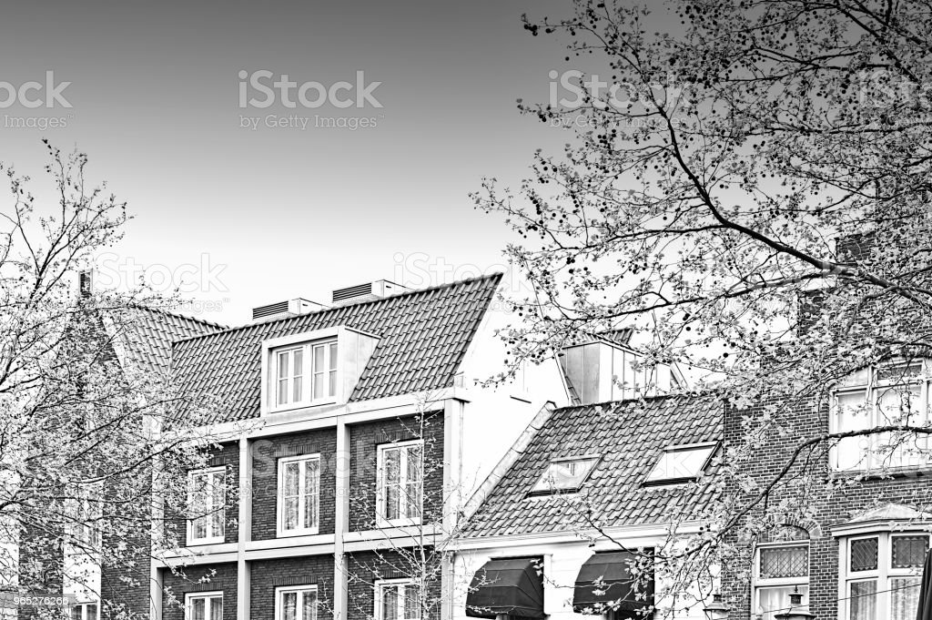 Traditional Buildings in the City of Amersfoort zbiór zdjęć royalty-free