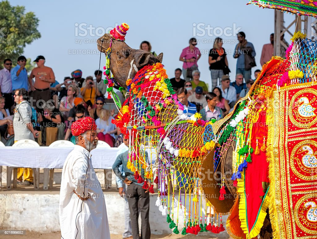 Traditional camel decoration competition at camel mela in Pushka stock photo