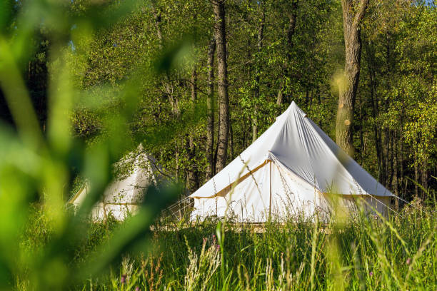 Traditional canvas bell tent outdoors in woods stock photo