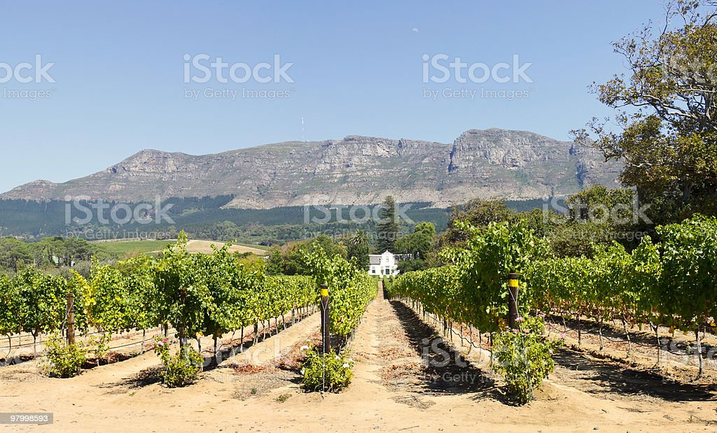 Traditional Cape Dutch homestead royalty free stockfoto