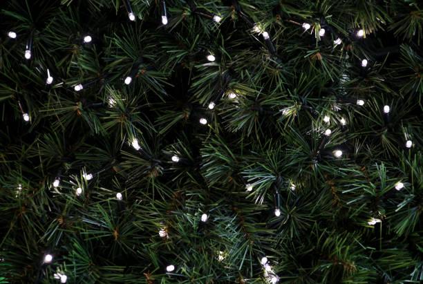 Luzes piscando tradicionais do Natal que penduram na árvore verde dos galhos do pinho como o fundo decorado. As filiais da árvore do abeto com arroz da corda iluminam bulbos. Ornamentos à celebração do Natal, cena do feriado. - foto de acervo