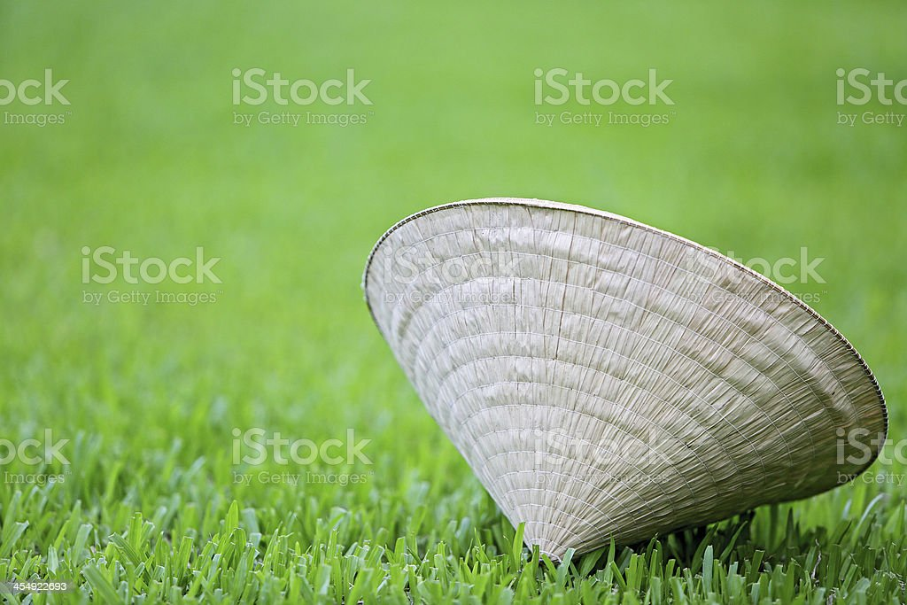 Traditional Conical Hat stock photo