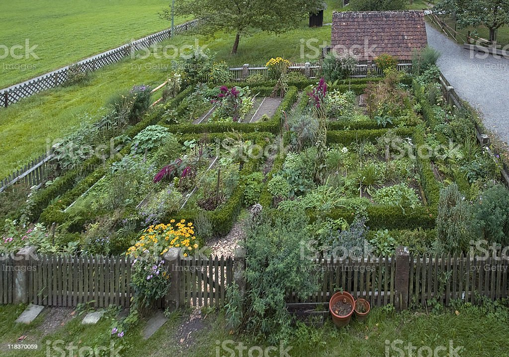 traditional cottage garden stock photo
