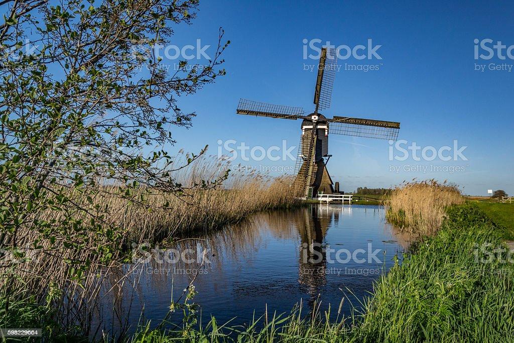 Moinho de vento holandeses tradicionais foto royalty-free