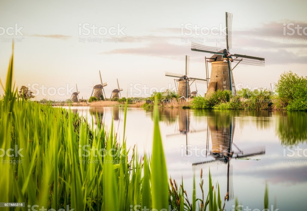Traditional Dutch windmills at Kinderdijk stock photo