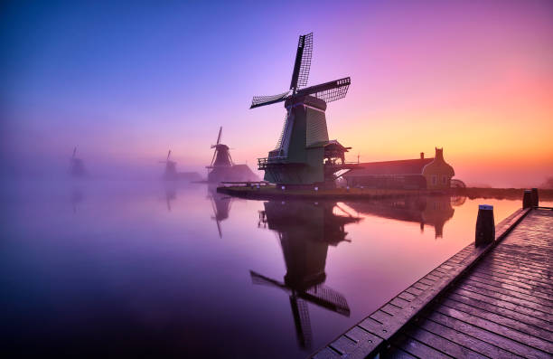 Traditional Dutch windmills in the mist during sunrise along a canal at the Zaanse Schans in The Netherlands. stock photo