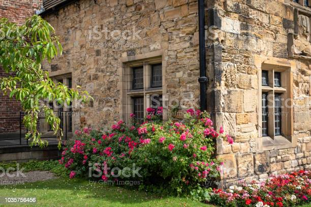 Traditional english old stone house with colorful geranium flower picture id1035756456?b=1&k=6&m=1035756456&s=612x612&h=s89kwutslv 9ow2dzwb69l0 zgfm0sdc8clptqxssj0=