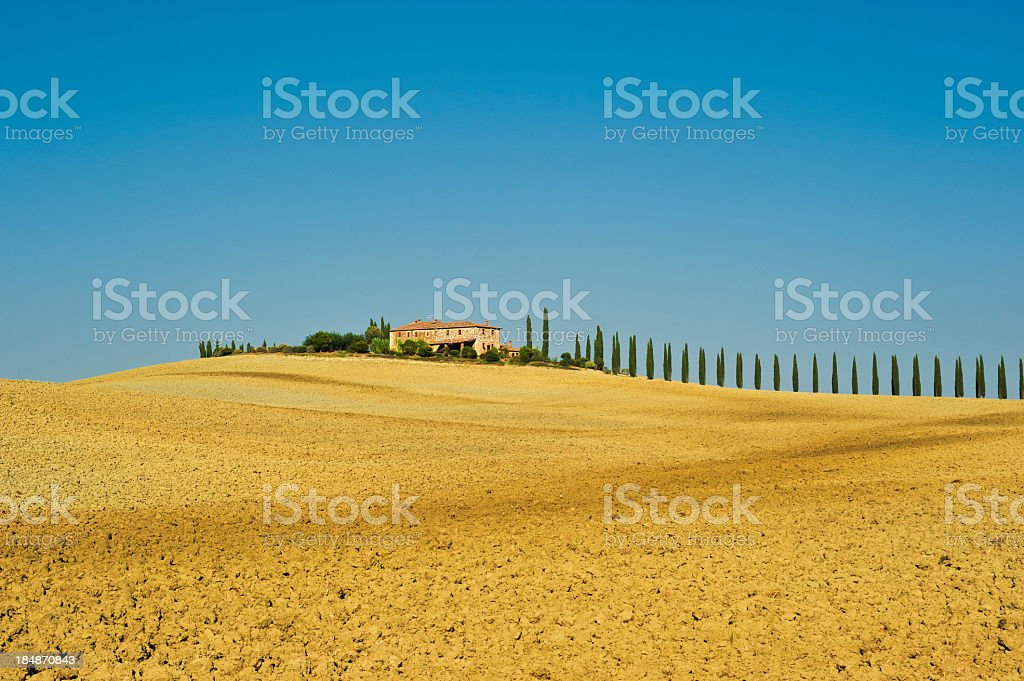 Traditional Farm On Tuscan With Cypresses Dry Crete Hill royalty-free stock photo