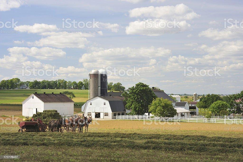 Traditional Farm stock photo