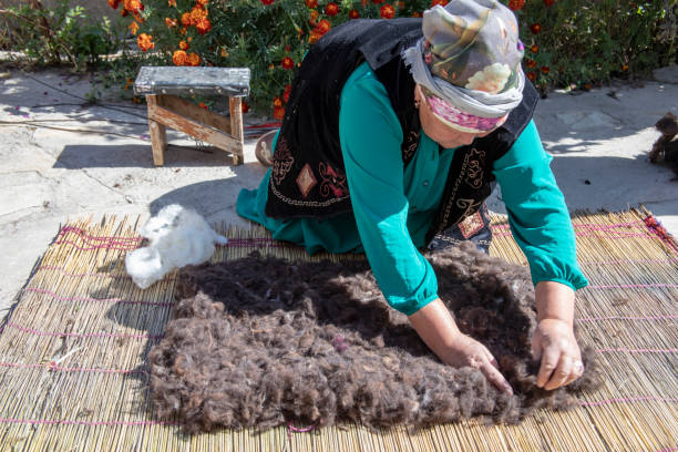 Traditional felt making in Kyrgyzstan stock photo