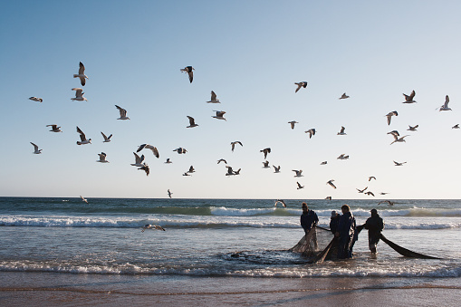 Costa da Caparica, Portugal - June 13, 2019: A group of fisher men pull a fishing net from the sea iio the costa da Caparica beach in Portugal.
