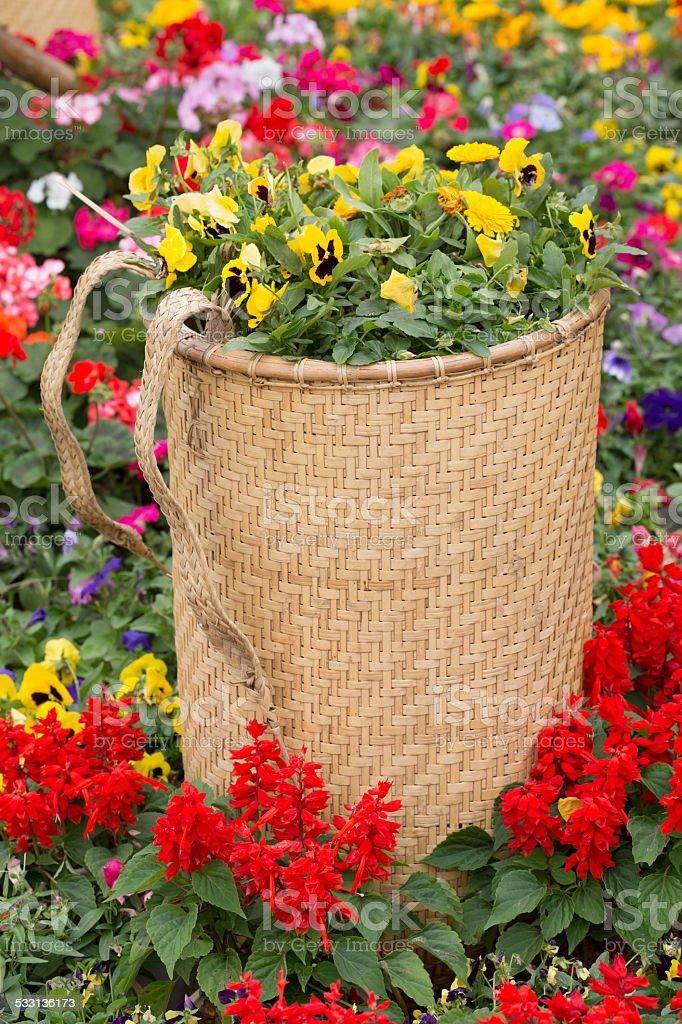 Traditional flower basket of ethnic groups (minority people) , o stock photo