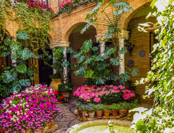 Traditional flower-decorated patio in cordoba, spain, during the Festival de los Patios Cordobeses Traditional flower-decorated patio in cordoba, spain, during the Festival de los Patios Cordobeses cordoba spain stock pictures, royalty-free photos & images